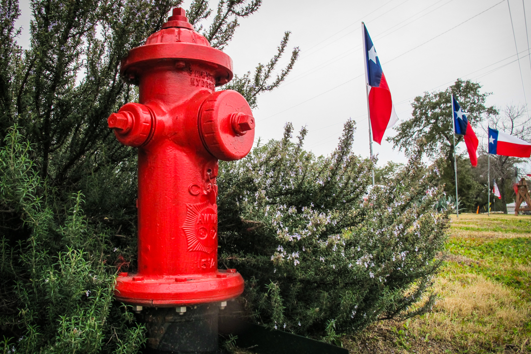 Lone Star Red