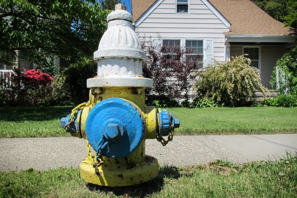 Uniondale Hydrant