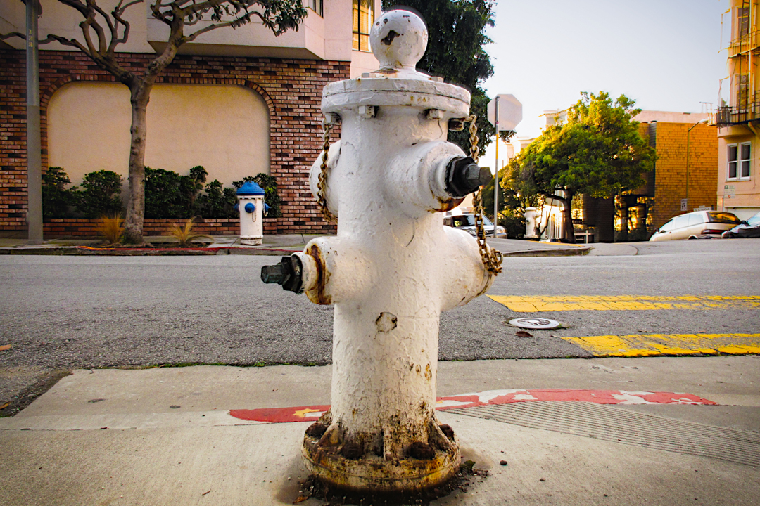 San Francisco: A Hydrant Playground