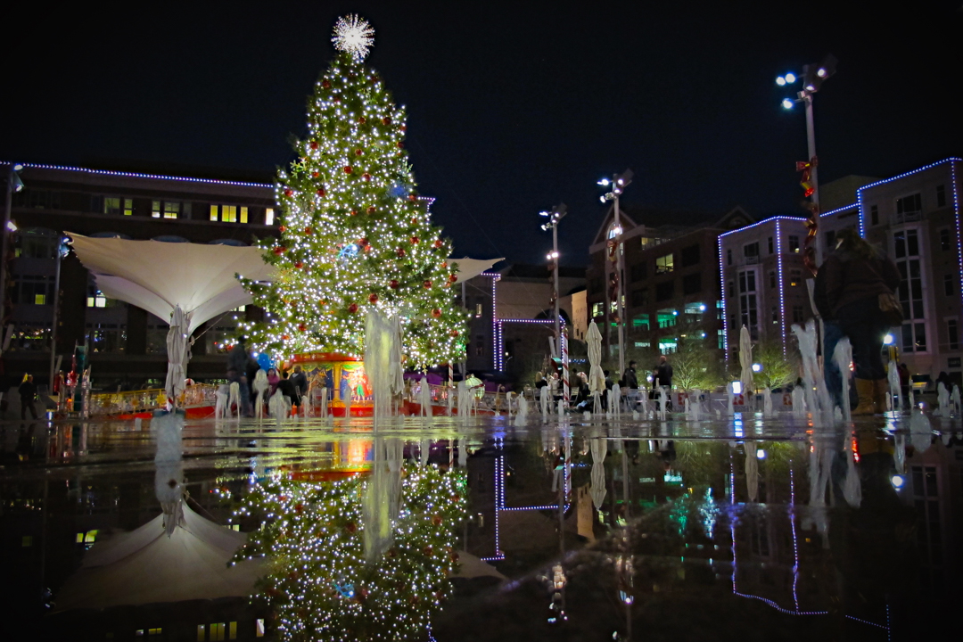 Sundance Square Tree