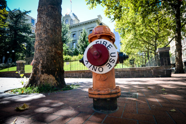 Pioneer Courthouse Hydrant, Portland, OR